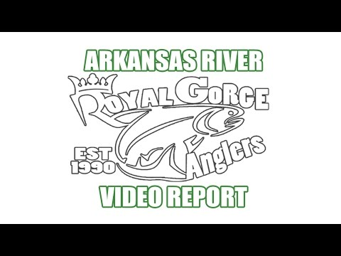 Arkansas River Fly Fishing Video Report presented by Royal Gorge Anglers