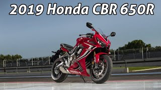 2019 Honda CBR650R | The Best Everyday Superbike In The World?