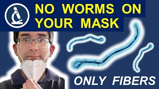 Why you should NOT be worried about microscopic worms Morgellons in your Face Mask 188