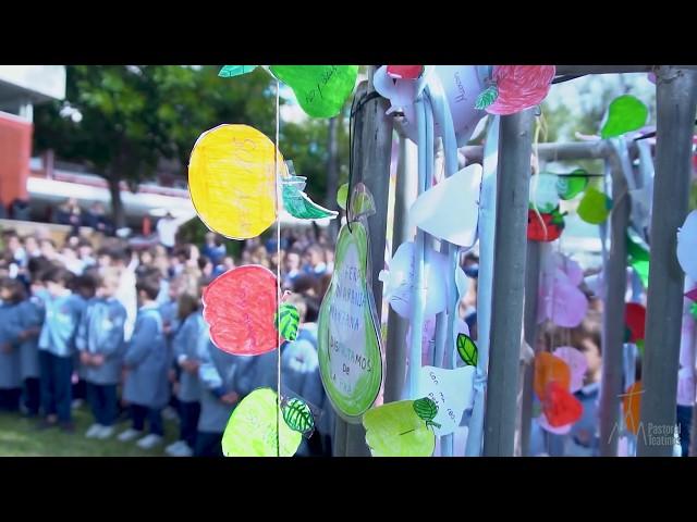 Día de la Paz 2020 - Colegio San Cayetano