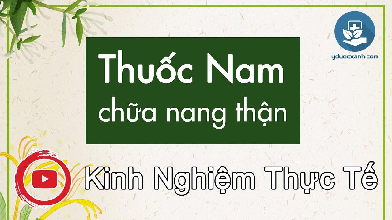 Bài thuốc nam, Dân gian chữa u nang thận, đa nang – Yduocxanh.com