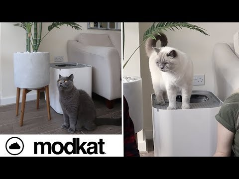 MODKAT XL LITTER BOX REVIEW | CHRIS & EVE [AD - gifted]