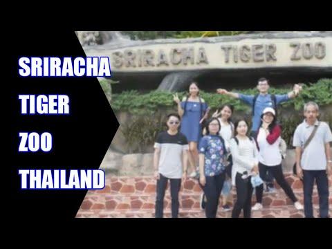 Trip to Thailand 2017 - Sriracha Tiger Zoo