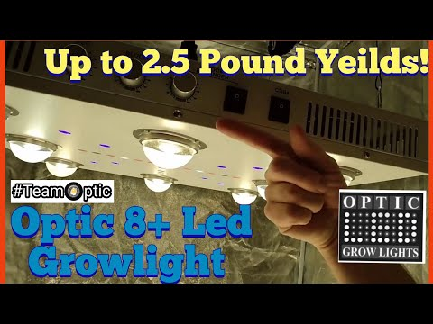 Optic LED Optic 8+ COB LED REVIEW - CREE CXB 3590 - Yield up to 2.5 Pounds!