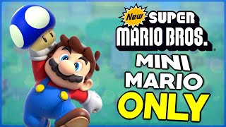 Is it possible to beat New Super Mario Bros. DS as Mini-Mario?