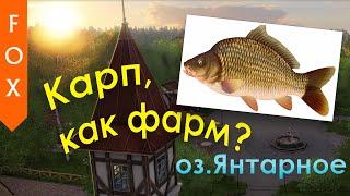 Карп на Янтарном Русская Рыбалка 4