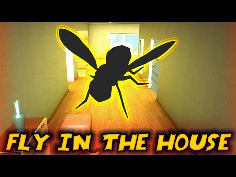 EthanGamerTV Plays Fly In The House (KID GAMING)