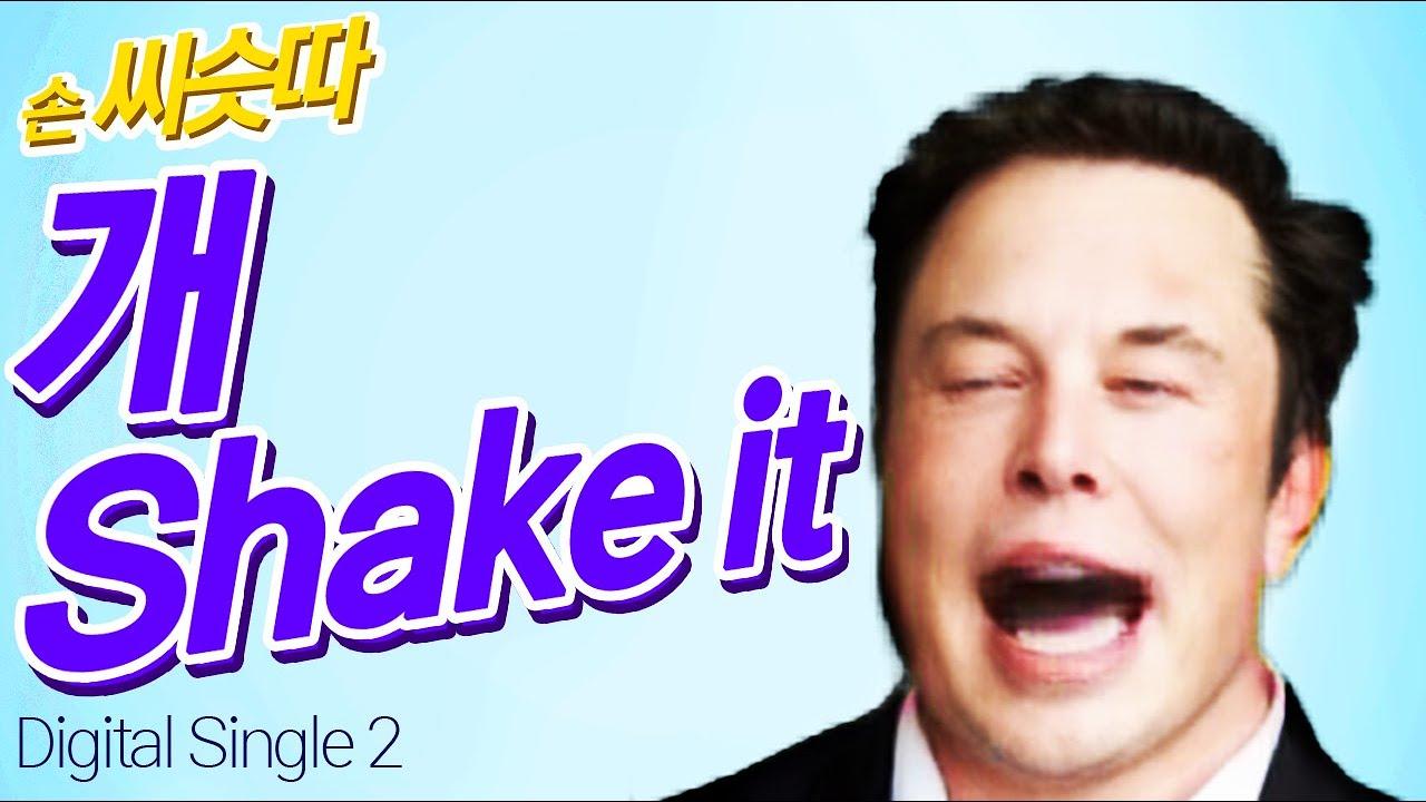 손 씨슷따 - 개Shake it (song by 나 일론 머스크) 원곡: 씨스타 - Shake it
