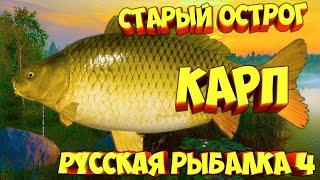 русская рыбалка 4 Карп озеро Старый Острог рр4 фарм Алексей Майоров russian fishing 4