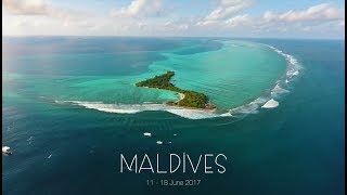 Is MALDIVES the best spot for surfing????