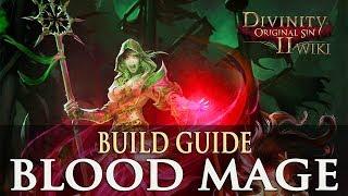 Divinity Original Sin 2 Builds - Blood Mage (Necromancer)