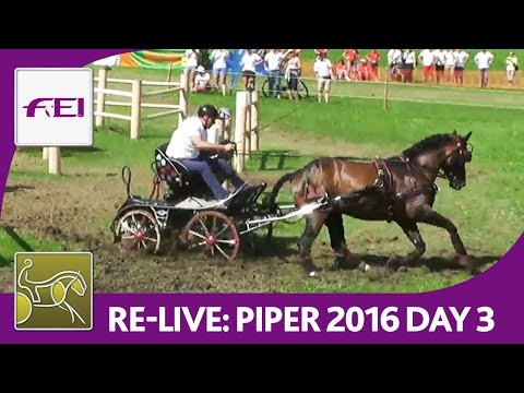 Re-Live | FEI World Championships For Single Driving | Marat