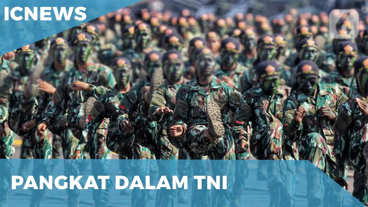 Download URUTAN PANGKAT TNI (AD, AU, AL)