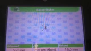 Animal Crossing New Leaf: Alle Insekten