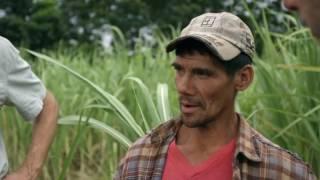 GSFA 2016 | Honest Tea, Inc. (U.S.A.) | Honest Origins: Paraguay