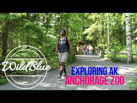 Exploring Alaska: The Anchorage Zoo