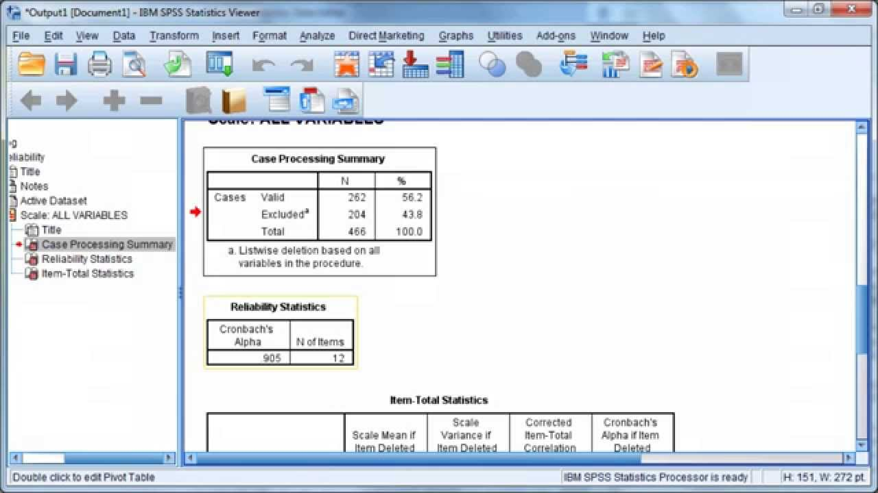 Technology Management Image: IBM SPSS Statistics 20: Cronbach's Alpha