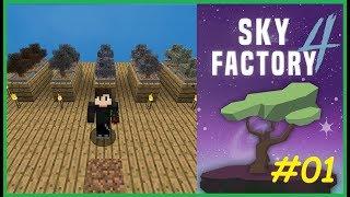 Bir Sürü Ağaç  | Sky Factory 4 Türkçe # 1