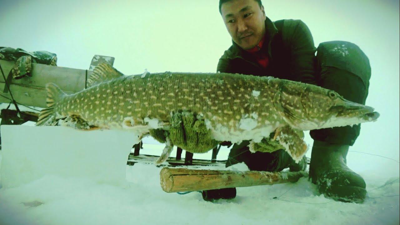 Рыбалка для сильных духом людей
