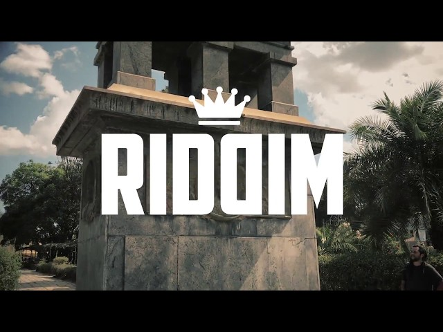 Riddim - Africa Land | feat. Brinsley Forde - VIDEO OFICIAL