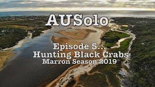 Graham Cahill: AUSolo 05 - Hunting Black Crabs