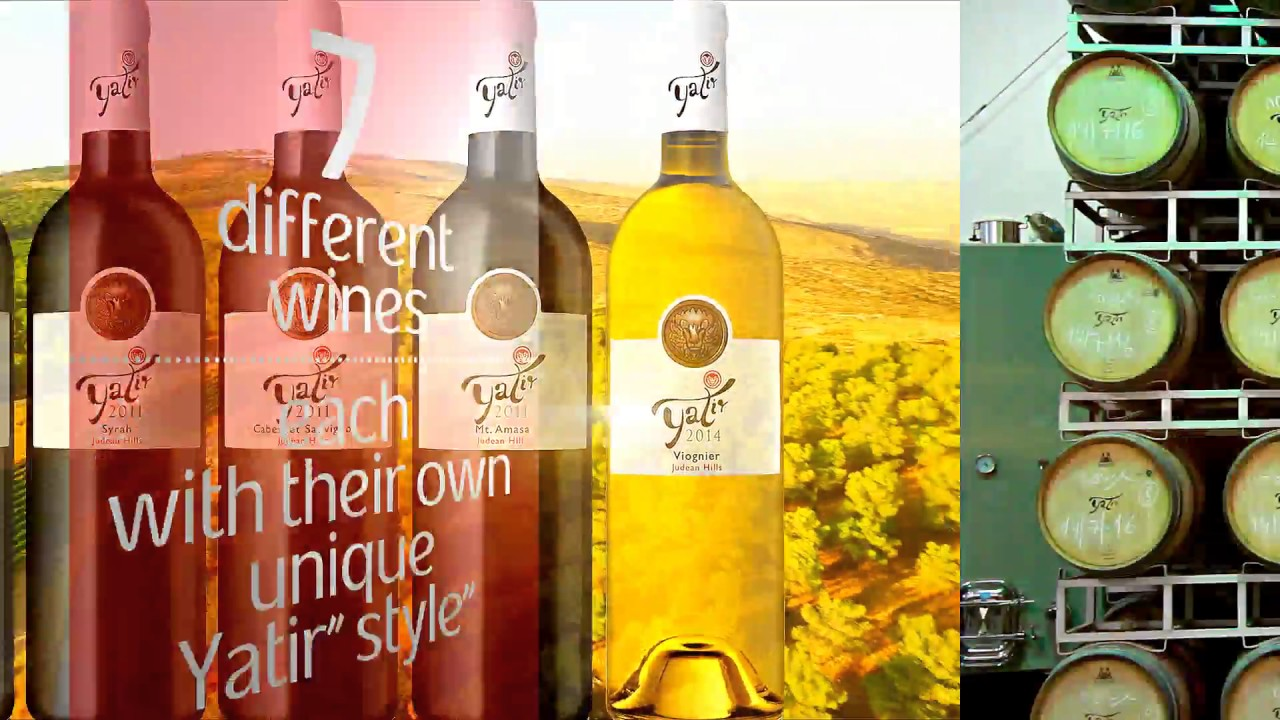 Download The story of Yatir Winery