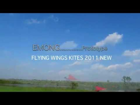 EMONG [Prototype] FLYING WINGS KITES 2011 NEW