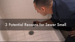 Why Do I Have a Sewer Smell in My Bathroom? 3 Potential Reasons. Seattle Best Plumbing (206)633-1700