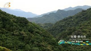 2011 07 09 美的因台灣新北市坪林區翡翠水庫文山包種茶水資源茶園茶葉採...