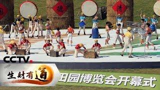 《生财有道》 20191029 浙江德清:打造田园牌 迎来全域美| CCTV财经
