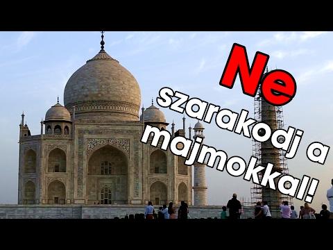 A Taj Mahal MAJOM BANDÁI | India #3