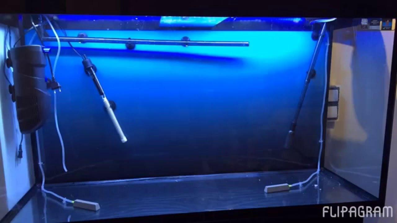 Montaje acuario comunitario aqualux 300 litros youtube - Montaje de acuarios ...