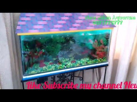 Aquarium Shopi How To Make Aquarium Top Cover Roof Lid Builder Fish Tank Cover Builder Youtube