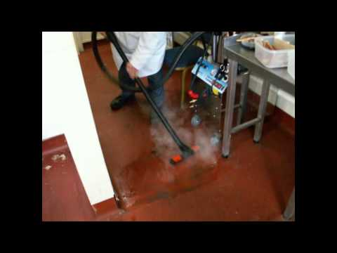 The Amazing Steam Clean Systems SC3000 Steam and Vacuum Cleaner