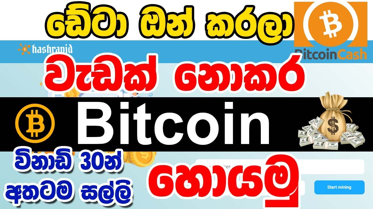 Cryptocurrency mining tutorial wow silvia hotz bettingen notaire