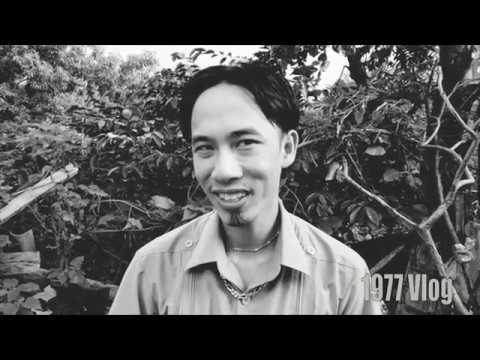 1977 Vlog - Spoil phim mới Cậu Vàng cực mạnh (Cậu Vàng Trong Vai Chó Shiba)