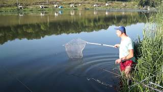 Рыбалка на карпа в п.Терновая