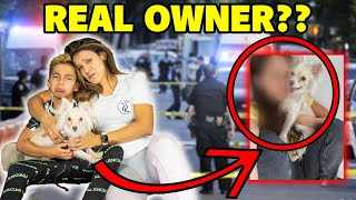 Did We Find The OWNER of The MISSING PUPPY?? **BIG INVESTIGATION** | The Royalty Family