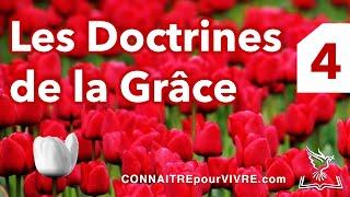 Les Doctrines de la Grâce (Partie 4): L'Expiation Limitée