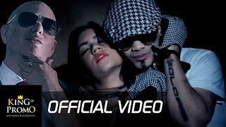 PITBULL y DON MIGUELO - Como Yo Le Doy (Remix) - OFFICIAL VIDEO HD
