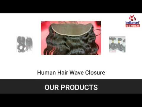 Human Hair And Hair Wig By Virgin Remy Hair Exports, Ludhiana
