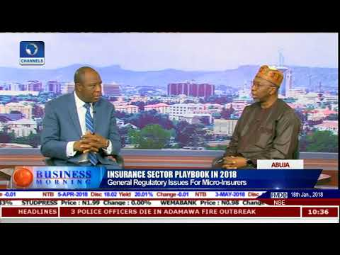 Analysing State Of Insurance Sector With NAICOM Commissioner Kari Pt.3 |Business Morning|