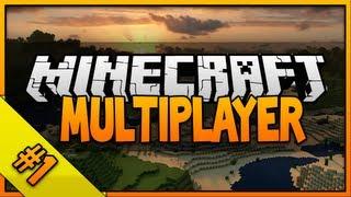 Minecraft Multiplayer: Let