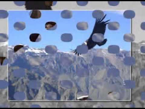 Zamfir - The Fly of Condor -Fusion Andina
