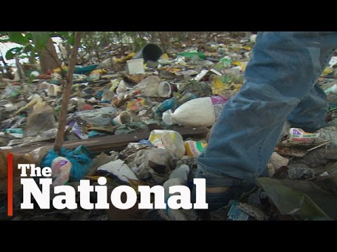 Pollution solution: Rio's guardians of the river