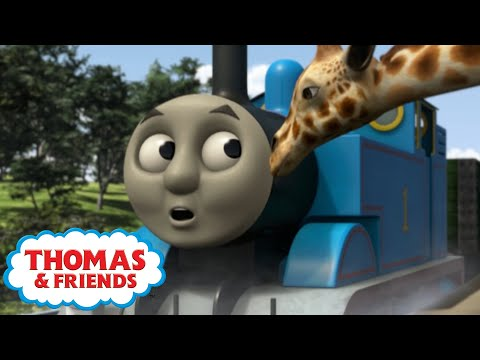 Thomas & Friends™ | Thomas' Tall Friends | 30 Min Compilation | Thomas The Tank Engine | Cartoon