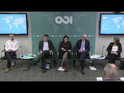 DFID At 20: What Have We Learned, And Where Next? - Panel