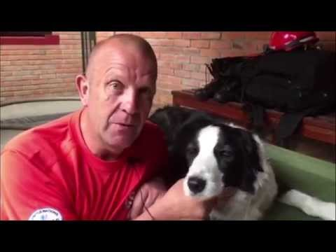 Meet firefighter Steve and his search and rescue dog Bryn