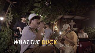 Duck Live 45 - ฝากไว้กับดาว (Secret of Star) - Whal & Dolph