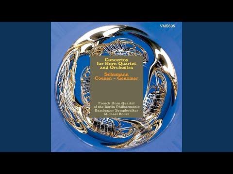 Konzertstück for Four horns and Orchestra, Op. 86: I. Lebhaft